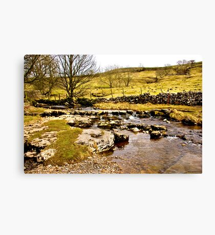 Cray Gill Stepping Stones Canvas Print