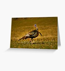 Doing The Strut Greeting Card