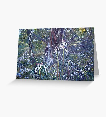 Spiders at Bullock Hills Dumbleyung Greeting Card