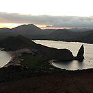 Galapagos Islands: Isla Bartolome, Pinnacle Rock at Sunset by tpfmiller