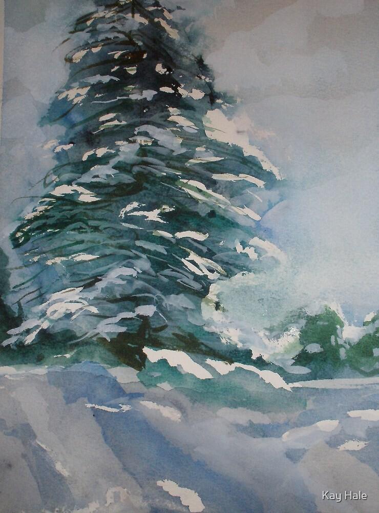 Pine Tree by Kay Hale