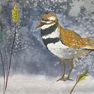 Sandpiper by Kay Hale