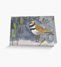 Sandpiper Greeting Card