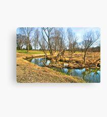 Meandering Creek Canvas Print