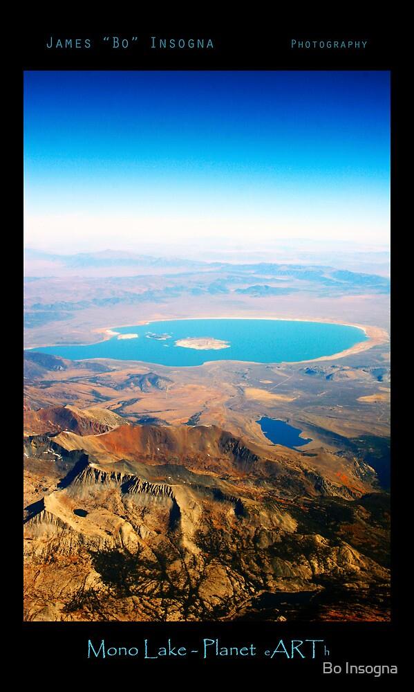 Mono  Lake - Planet eARth - Vertical by Bo Insogna