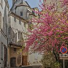 A Little French Street In The Loire Valley by Michael Matthews