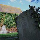 In Grave Danger by Dave Godden