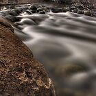Fleming Creek by Chintsala