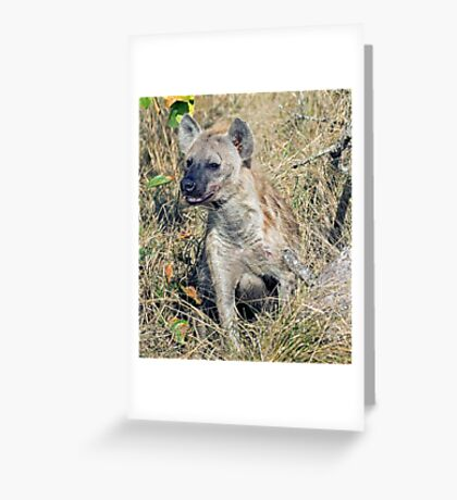 Hyena Greeting Card
