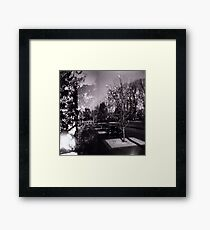 Bloom trees in Carlton Framed Print