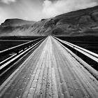 Road to Vik by David Bowman