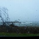 Through a Rainy Windshield by quiltmaker