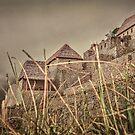 Houses of Machu Picchu Inca City by DFLC Prints