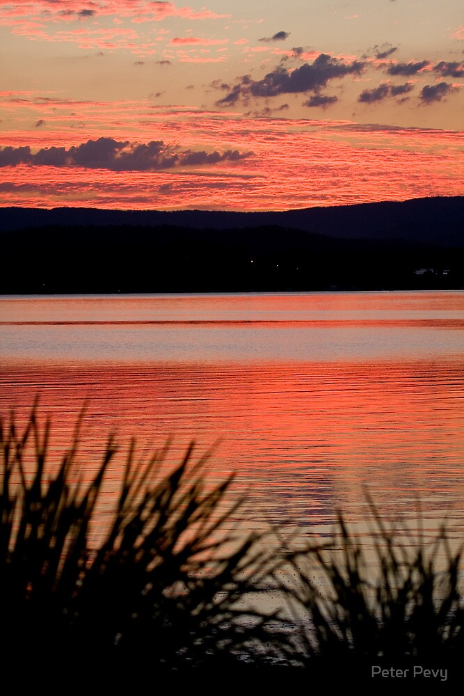 The Orange Lake by Peter Pevy