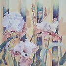 Iris on the Fence by scallyart