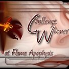 Challenge Win Flame Apophyis by Aira-Art