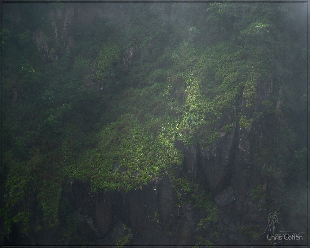 Gorge(ous) Walls throught the mist. by Chris Cohen