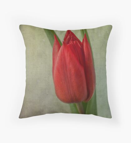 Simply red Throw Pillow
