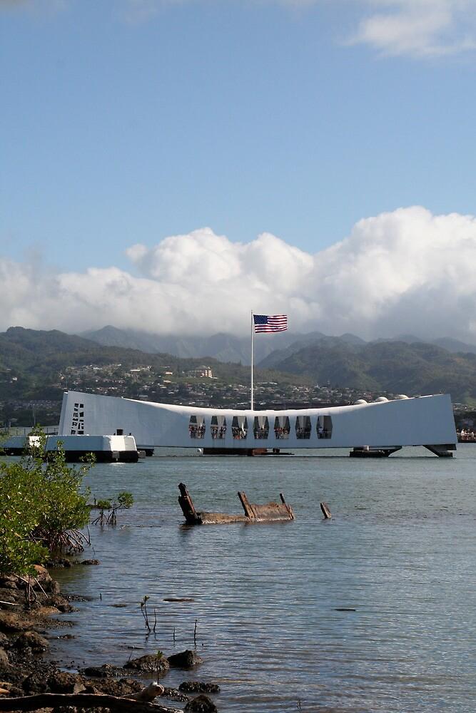 Arizona Memorial, Pearl Harbor, Hawaii by dhetzler