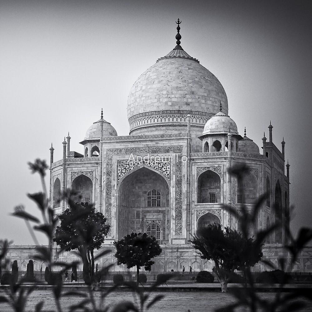 Mausoleum of Mumtaz - Taj Mahal by Andrew To