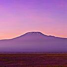 Kilimanjaro Sunrise - Panoramic - Amboseli National Park by Scott Ward