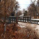 St. Vrain River Walk Bridge by Barb Miller