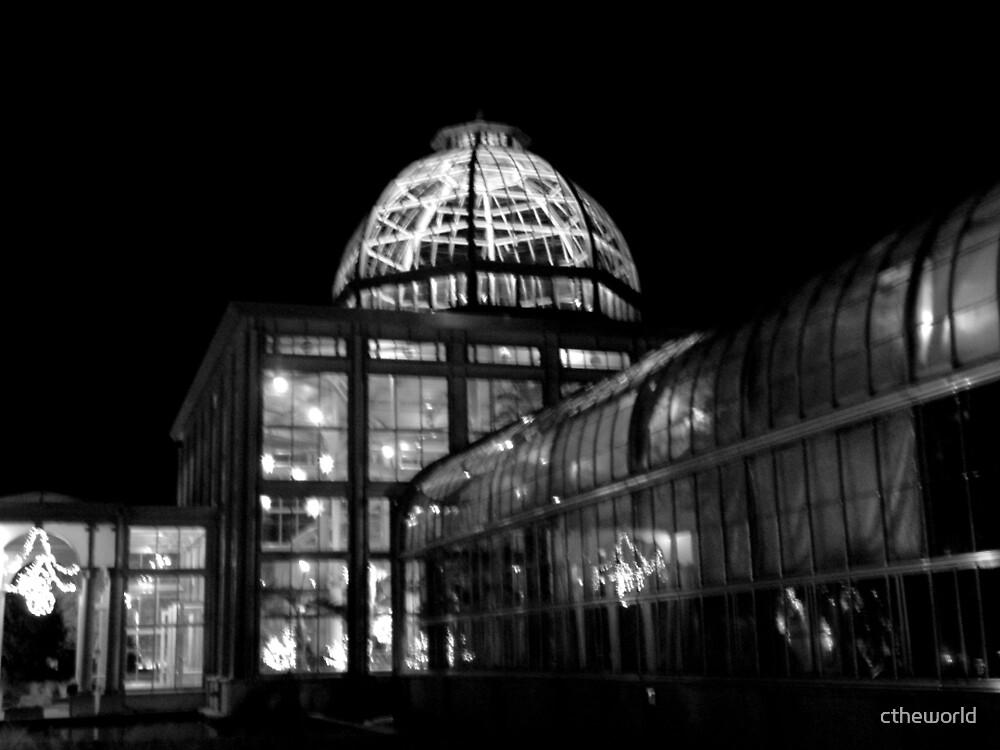 Lewis Ginter Botanical Garden- Richmond (B&W) by ctheworld