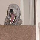 Tired Jake Yawning by JenaHall