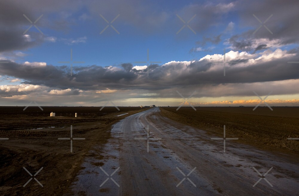 Wet Country Dirt Road by Buckwhite