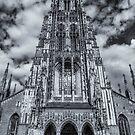 Ulmer Münster von Mark Bangert
