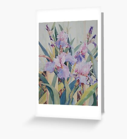 Mauve Iris Greeting Card