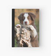 Curious Aussie Puppy Hardcover Journal