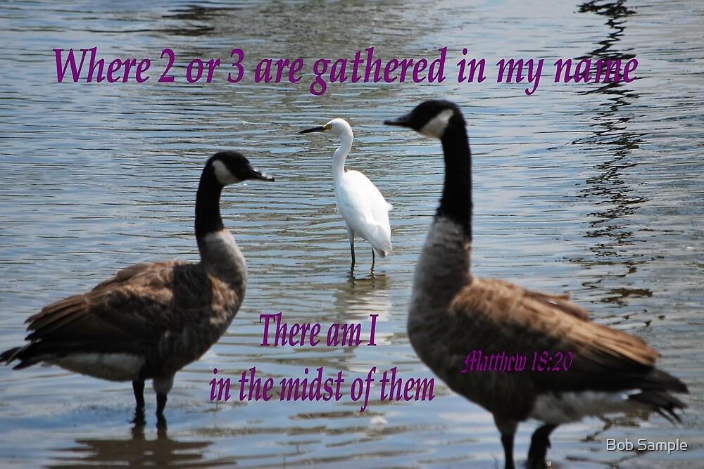 Matthew 18:20 by Bob Sample
