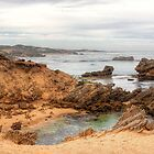 The Crags Coastal Reserve, Yambuk, Victoria by Christine Smith