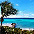 Caribbean Scenic Landscape by virginia50