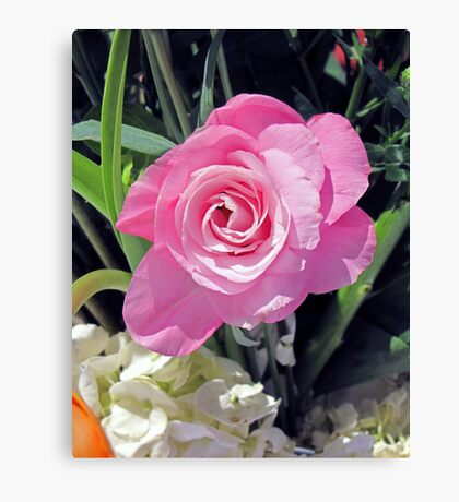 A Birthday Rose Canvas Print