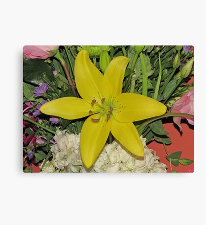 Yellow Birthday Lily Canvas Print