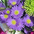 Purple Passion by MichelleR