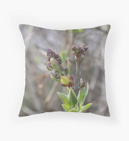 I Wanna be Purple..... Lilac Throw Pillow