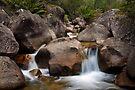 Buffalo Creek by Travis Easton