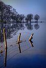 Sun on Loch Ard by David Mould