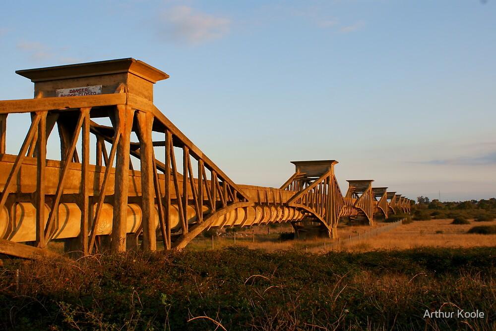 Sewer Aqueduct III by Arthur Koole
