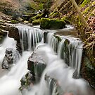 Scalebar Force Waterfall by Stephen Knowles