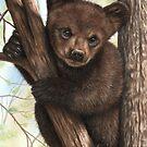 Bear Cub by Richard Macwee