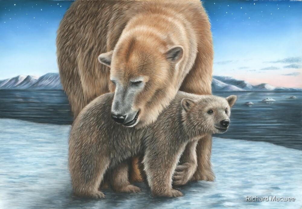«Oso polar y cachorro» de Richard Macwee