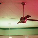Fran's Ceiling Fan by accozzaglia