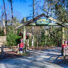Naturzentrum Aktivitätszentrum im MB State Park von TJ Baccari Photography