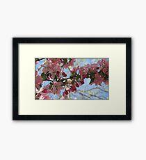 spring! Framed Print