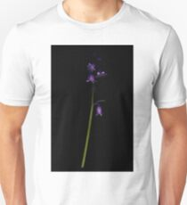 Bluebell - Two T-Shirt