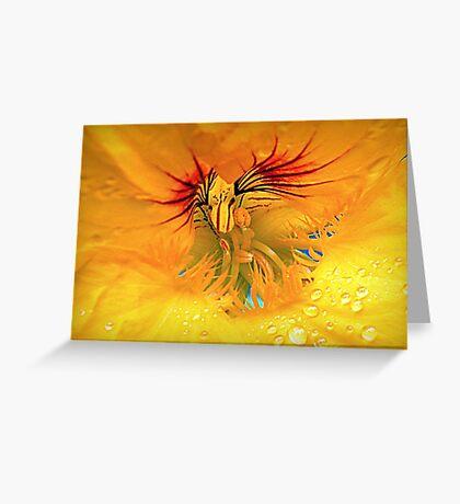Wayward Heart Greeting Card